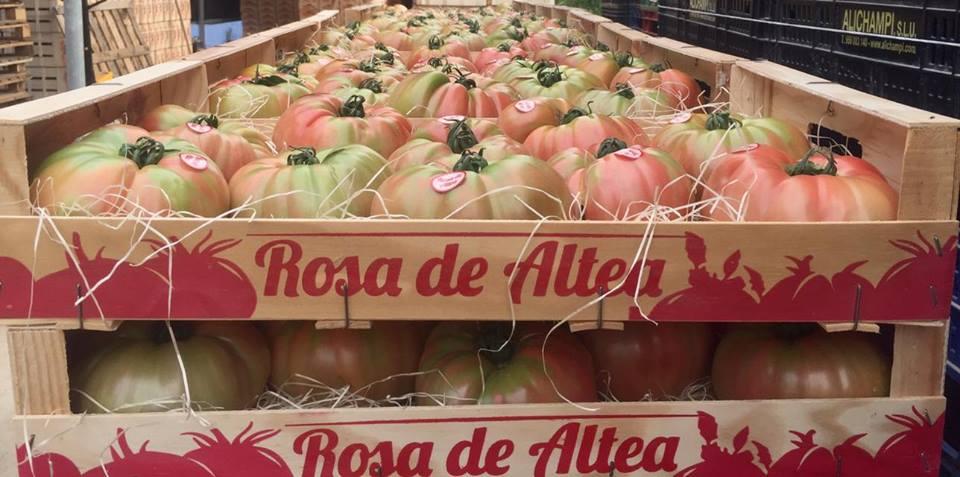 El tomate rosa de Altea y el de Mutxamel
