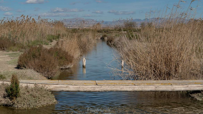La pesca tradicional del mújol y de la anguila en la Finca El Pantanet