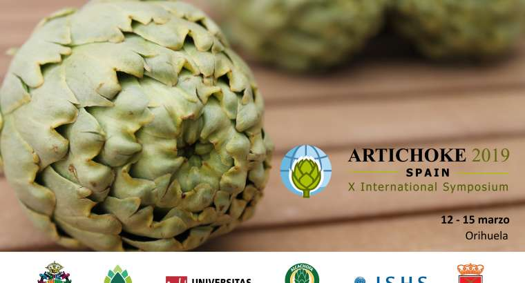 La ciencia analizará en Orihuela las virtudes de la alcachofa