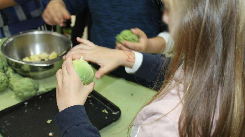 Más de 200 escolares de Orihuela celebran el Día de la Alcachofa
