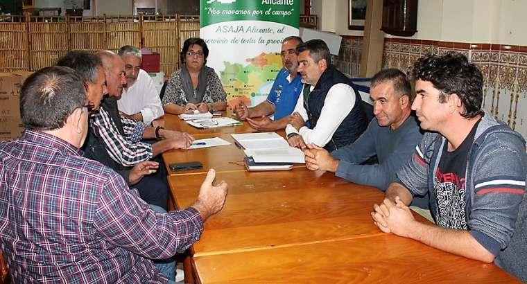 Asaja crea la Sectorial del Arroz de Alicante en Pego con el respaldo de más del 50% de los productores