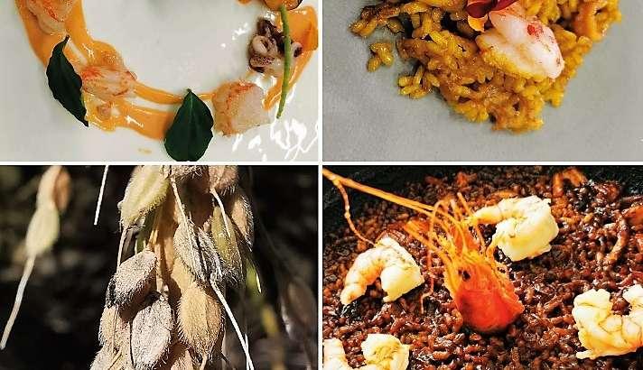 La UA abre la inscripción de su oferta formativa de relacionada con la gastronomía